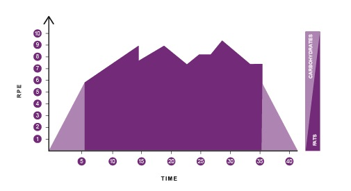 Tour de France Cycling Profile