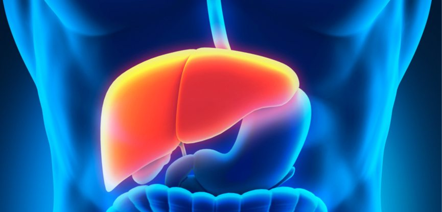Protect your liver but reducing alcohol consumption