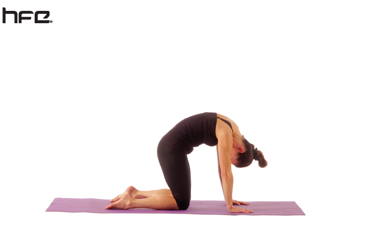 A female yoga teacher performing a cat pose