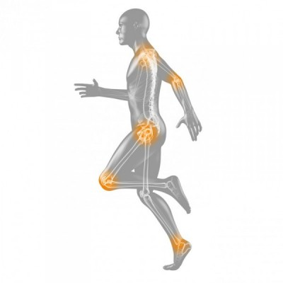 An anatomical diagram of a runner