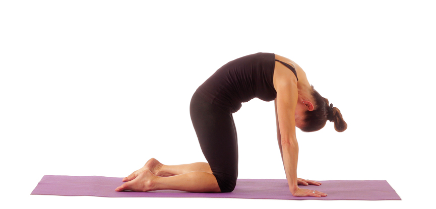 A yoga teacher performing the cat pose