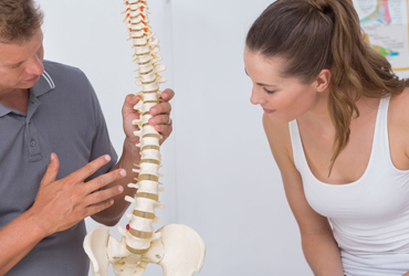Back pain specialist showing a model of a spine to a client