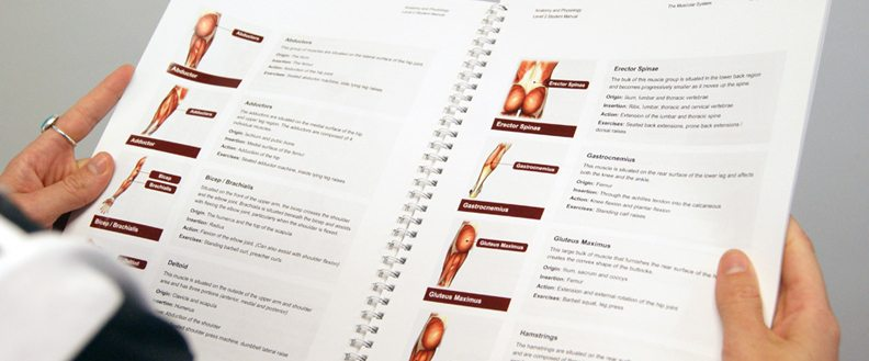 An HFE anatomy and physiology manual