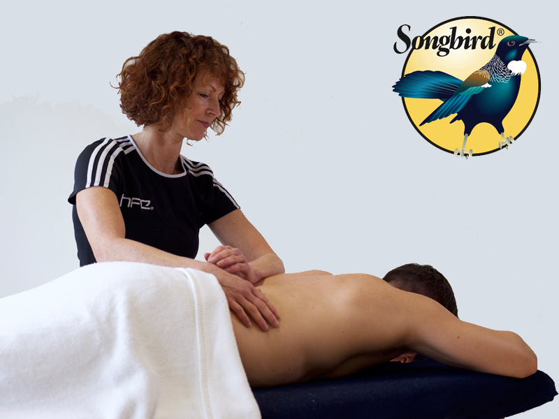 Songbird Naturals have partnered with HFE on their sports massage courses
