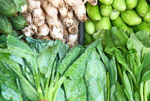 Training on a Vegetarian or Vegan Diet
