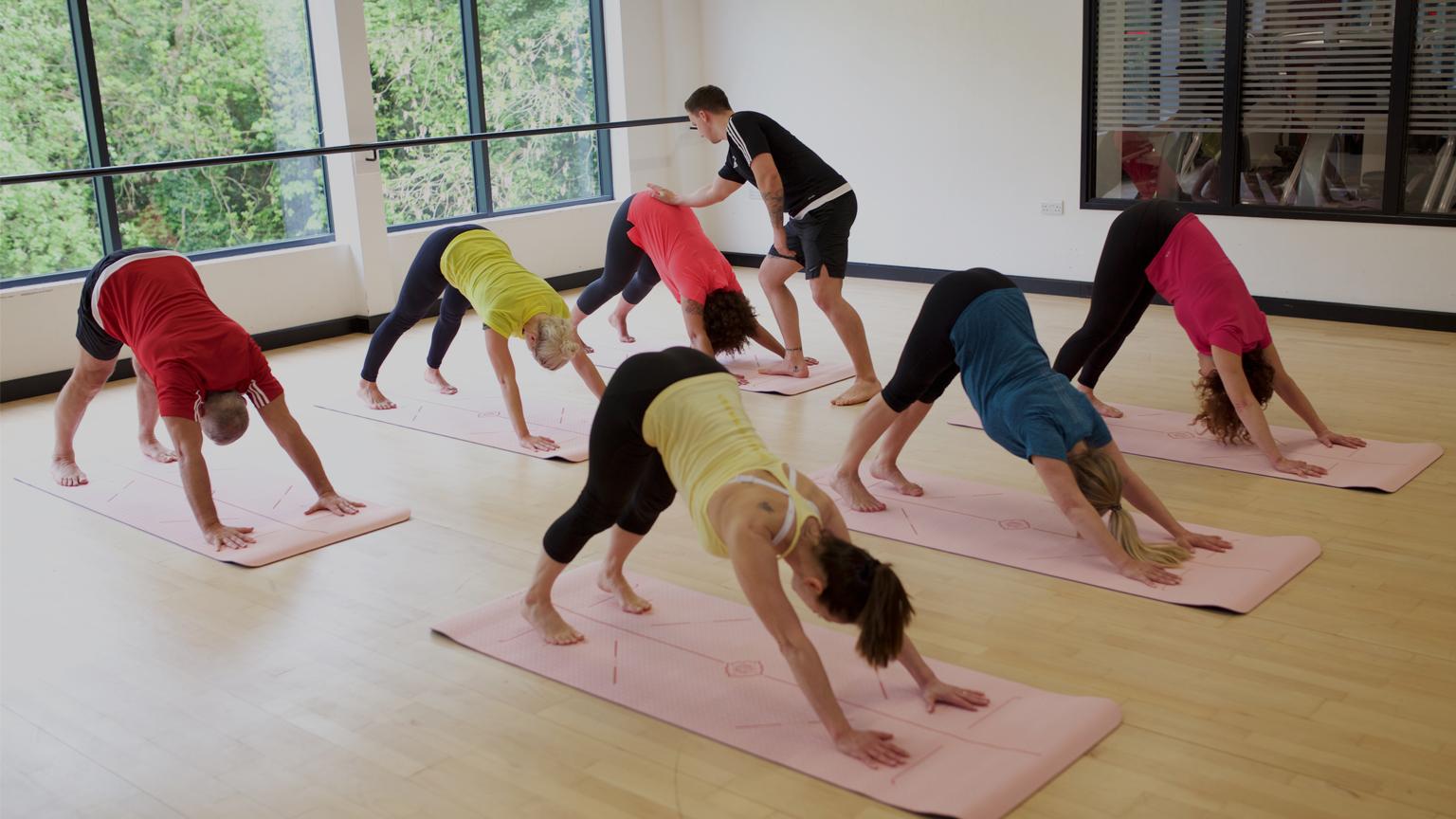 =HFE yoga instructor teaching downward-facing dog
