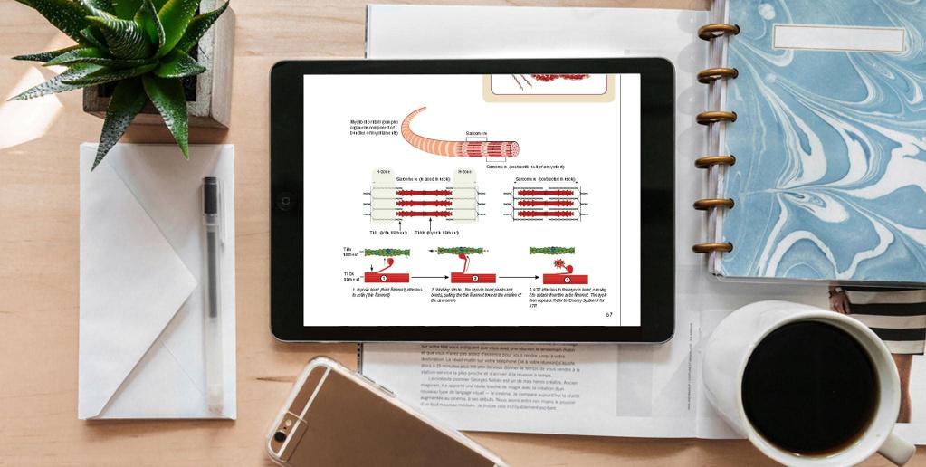 Digital training manual